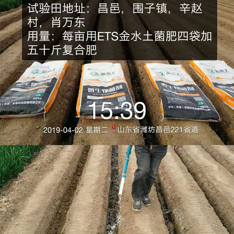 bwin手机登录菌肥